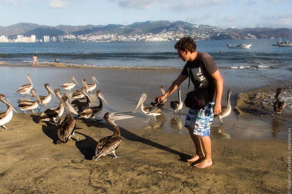 20130322_Mexico_Acapulco_IMG_6634
